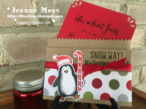 Snow Place Gift Card Holder